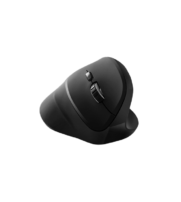 Canyon Vertical Wireless Mouse - CNS-CMSW16B